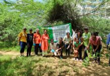 FMRI Plantation Drvice Aravali Hills on Swachh Bharat Swachh Gurugram
