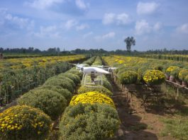 agriculture with drones