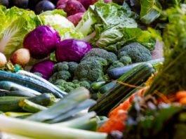 Food & Micronutrients